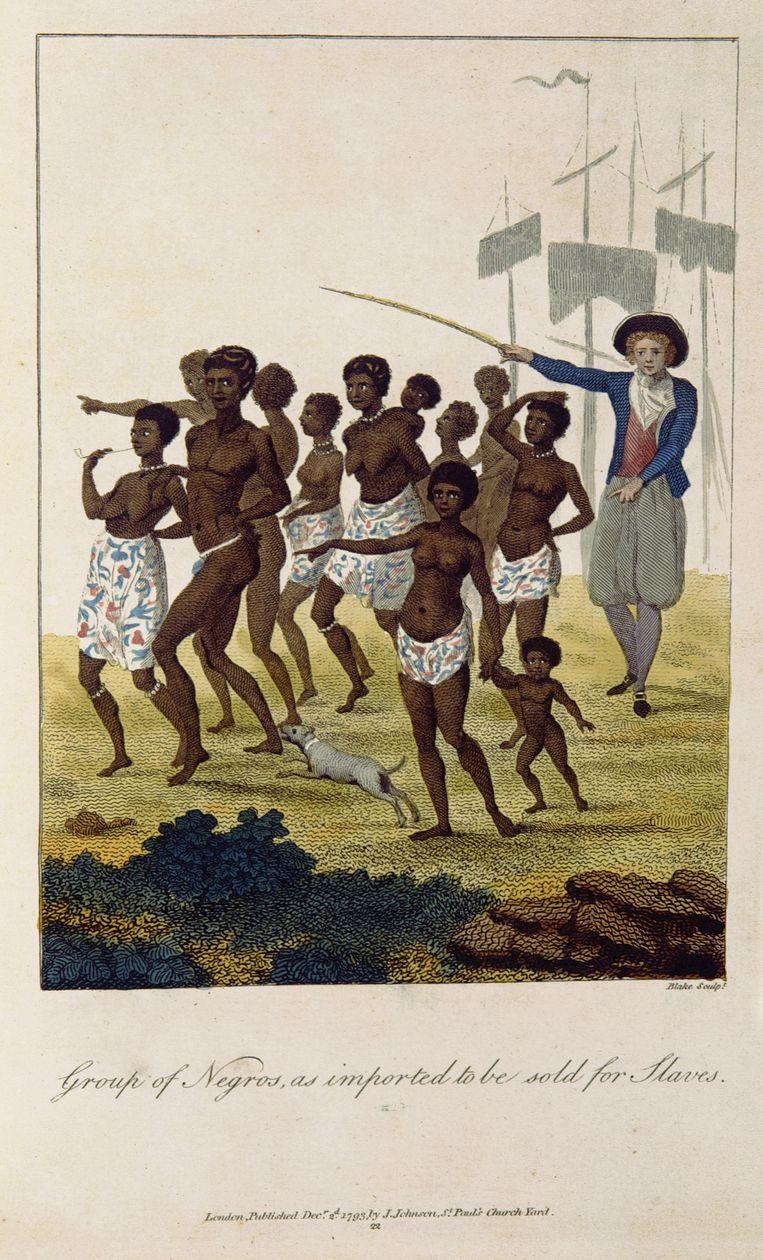 Voer voor abolitionisten: de prenten van J.G. Stedman. Die was zelf getrouwd met een slavin, schrijft Tang. Beeld