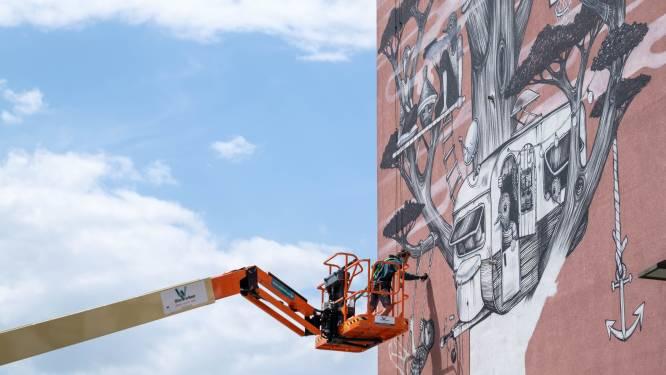 Gijs Vanhee plant imposante boom in Oud Oefenplein: volgende week volgen vijf andere muren