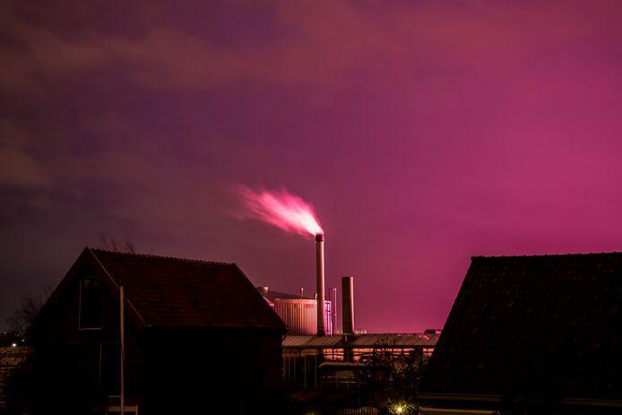 De lucht in Westland is op bepaalde tijden een bijzonder palet aan kleuren rijk, veroorzaakt door verlichting die tuinders gebruiken om hun planten beter te laten groeien. Ledlampen kleuren paars en traditionele lampen oranje.