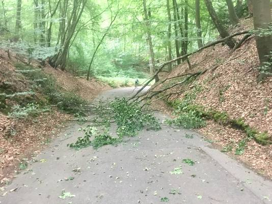 De Diepesteeg in  het weekend na de tornado. De weg is inmiddels weer vrij.