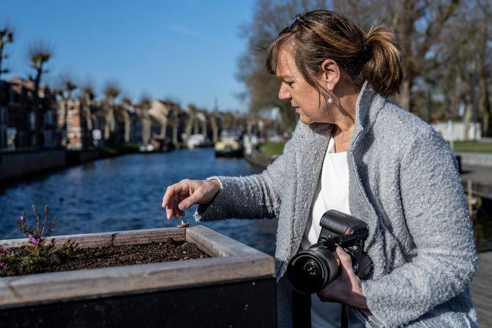 Mien Roose fotografeert miniatuurtaferelen in de Lokerse binnenstad.