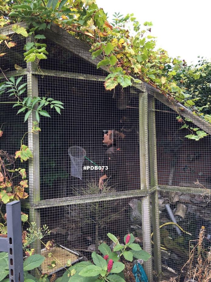 Een van de volières in de tuin van de woning in Den Bosch.