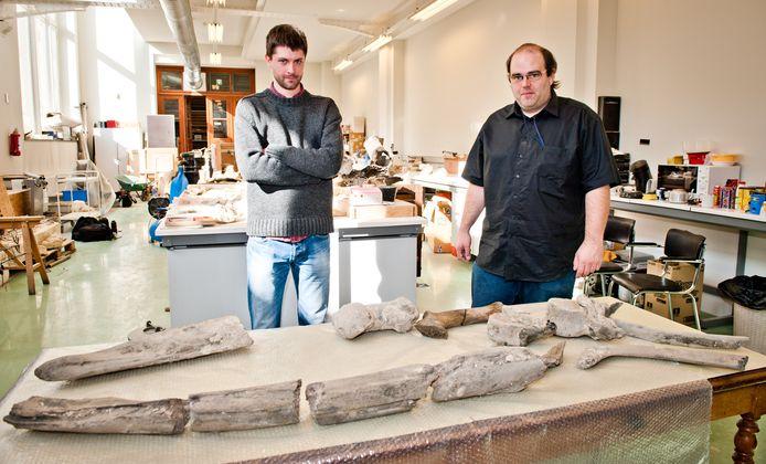 Paleontologen Olivier Lambert en Stijn Goolaerts met het fossiel in 2013.