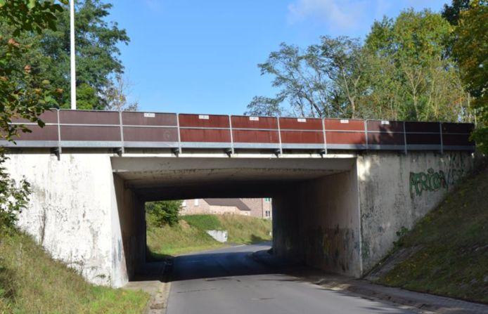 de brug aan de Expresweg/Banhagestraat