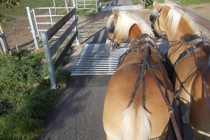 De paarden kwam vast te zitten in deze veerooster in het Kortseveld in Sint-Lievens-Houtem. wildrooser