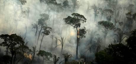 Déjà un record d'incendies en Amazonie, plusieurs mois avant le pic annuel