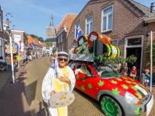 Wietplanten Jan en Jannie populairste onderwerp bij grote optocht Euifeest in Hasselt