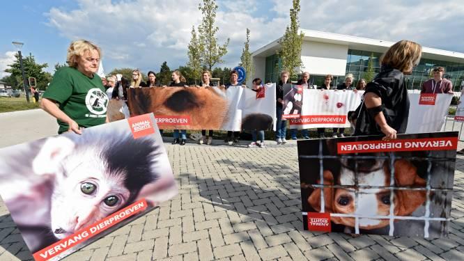 """Elke maand nog altijd 20.000 dierproeven: """"Noodzakelijk kwaad"""""""