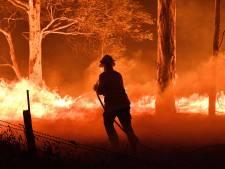 Le bilan s'alourdit en Australie: 14 personnes ont trouvé la mort dans les feux de forêt