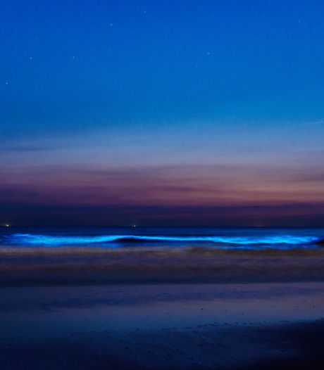 Komende dagen 'lichtgevend water' te zien in de Noordzee: zeevonk