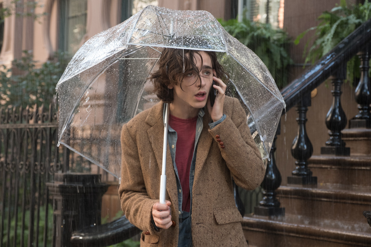 Timothée Chalamet excelleert als Woody Allens alter ego in 'A Rainy Day In New York'. Vooral de neiging om elke twijfel uit te spreken en eindeloos door te neuzelen over zijn onzekerheden.