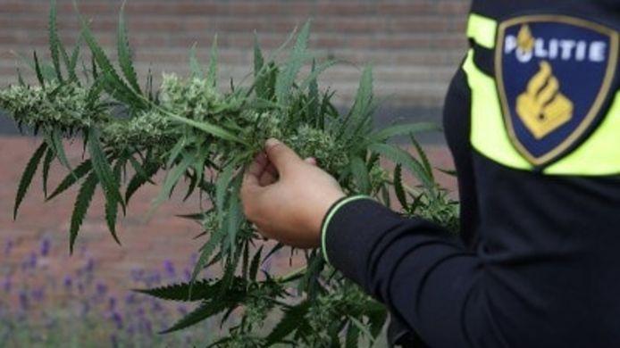 Politie Helmond