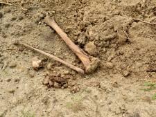 Ad zag twee botten uit het zand steken op de begraafplaats: strenger toezicht op ruimen van graven