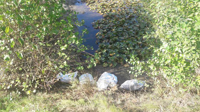 Zakken afval aan de rand van een vijver in park Meerland