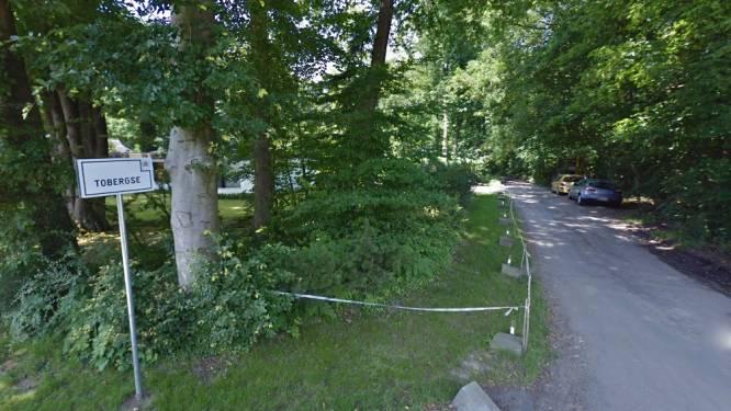 Alerte buur slaat alarm: politie vat vier inbrekers bij de kraag in Bellegem