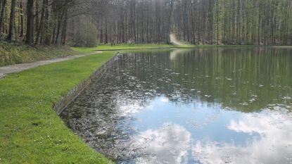 Bacterie en warm voorjaar zorgde voor vissterfte in kasteelvijvers van Gaasbeek