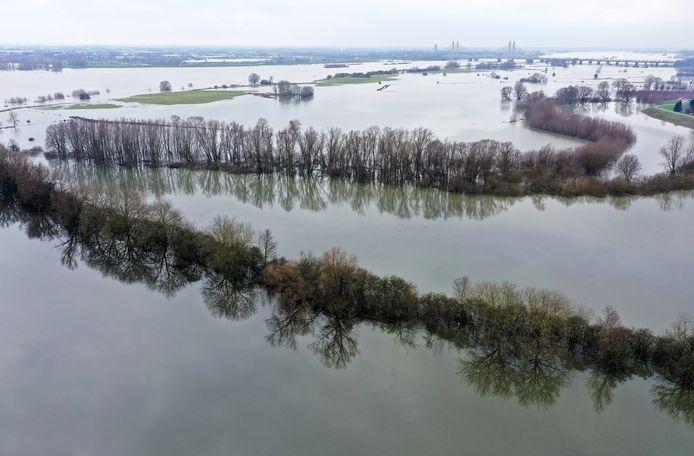 Door de hoge Rijnafvoer stonden de uiterwaarden van de Waal blank.