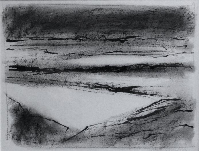 'Water en land', krijt en inkt op papier van Margriet de Vries.