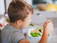 Les médecins contre le régime végan imposé aux enfants