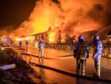 Stalbrand betekent golf aan protesten, maar impact op boer is óók enorm: 'Dit wil je niet nog eens meemaken'