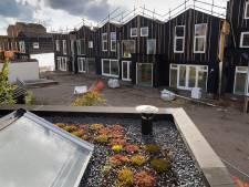 Méér groene daken, regentonnen en verschillende bomen in Den Bosch om 'de bijen helpen'