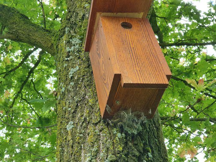 Het plaatsen van nestkasten voor mezen op locaties waar de eikenprocessierups voor problemen zorgt, helpt om het aantal rupsen terug te dringen.