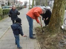 Gemeente wil Gorcumers handje helpen met adoptiegroen: 'Het succes lijkt opgedroogd'