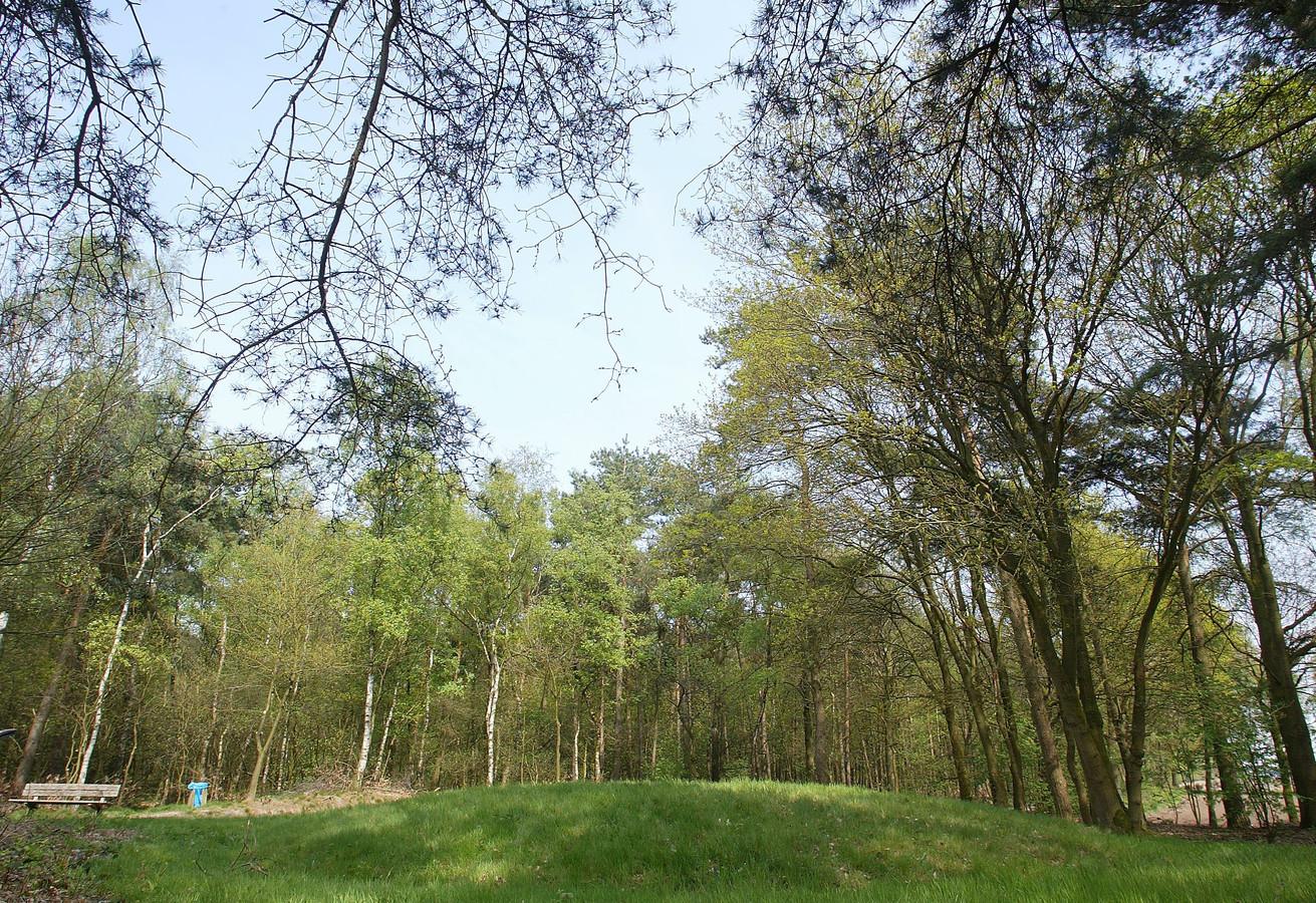 In de omgeving van de vliegbasis zijn al eerder grafheuvels ontdekt, tussen de gehuchten Toterfout en Halve Mijl in Veldhoven.