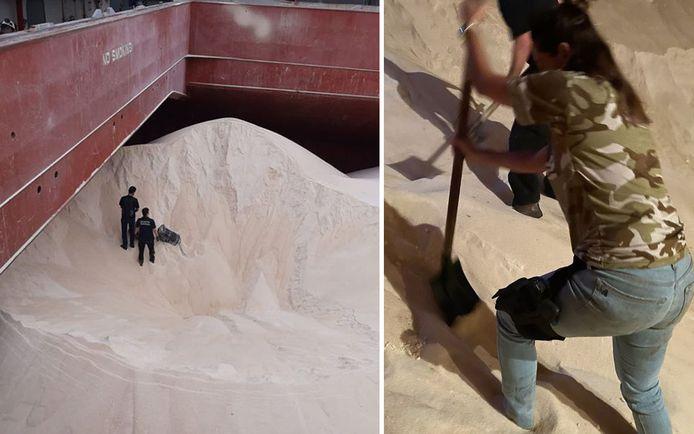 De agenten moesten in een berg suiker van 46 ton op zoek naar een lading cocaïne.