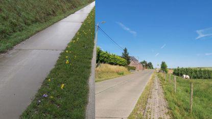 Burgemeester vraagt deliberatie voor 'kleine buis' op fietsrapport