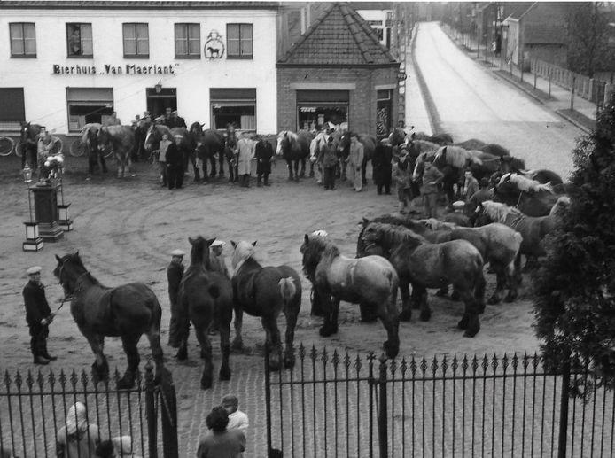 De paardenwijding was vroeger één van dé evenementen op het dorpsplein van Snellegem.
