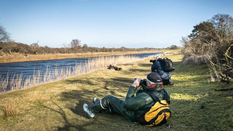 Cursisten Guy Sponton, Jacob Wijs en Marleen Krijtenberg (liggend), hopend op een wilde vos voor hun lens. Beeld Dingena Mol