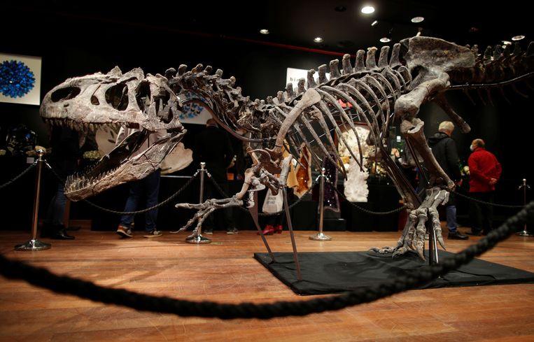 De resten werden in 2016 opgegraven in de Amerikaanse deelstaat Wyoming.  Beeld REUTERS