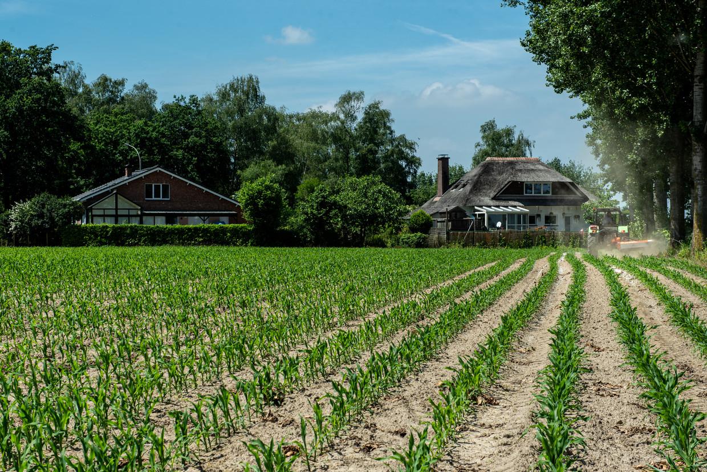 In een straal van anderhalve kilometer rond de 3M-site wordt bewoners onder meer afgeraden om zelfgekweekte groenten op te eten. Beeld Wouter Maeckelberghe