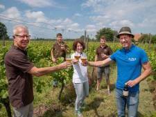 Goudhaantje, bier van Groesbeekse wijngaard