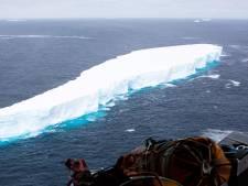 Le plus grand iceberg du monde se disloque doucement au large de la Géorgie du Sud