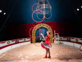 ONZE WEEKENDTIPS voor Mechelse regio: Genieten van circusvoorstelling, wandeling met boekenprins en feestje op z'n Mexicaans