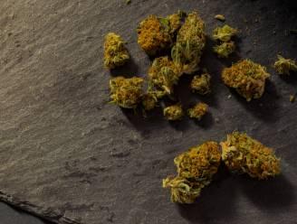 Tot één jaar effectief voor bende die jongeman week lang gijzelde als vergelding voor 25 gram weed