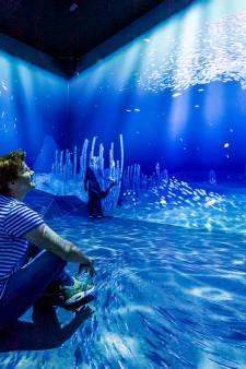 In deze nieuwe Rotterdamse attractie sta je te tollen op je benen: werk Hollandse meesters komt tot leven