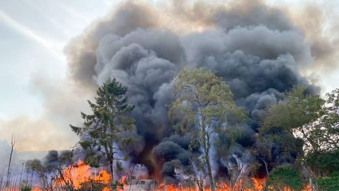 Zware brand bij Boomkwekerij De Bock in Nederename: één werknemer lichtgewond en asbest vrijgekomen