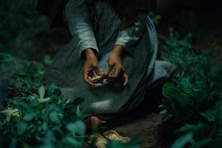 Fragment uit 'The Underground Railroad'. Beeld K2 / Filmstill
