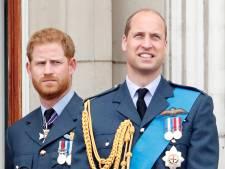 Ruzie over vermeend pestgedrag Meghan mogelijk basis van breuk tussen Harry en William
