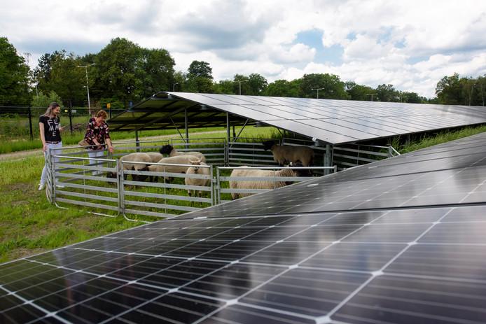 Nederland is opgedeeld in regio's die moeten aangeven waar grote wind- en zonneparken kunnen worden aangelegd. Op de foto het Zonneveld in Best.