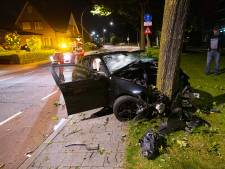 BMW botst gruwelijk tegen boom in woonwijk Elspeet: bestuurder zwaargewond