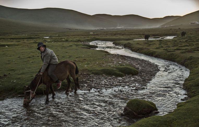 Een nomade in de Tibetaanse hoogvlakte. Beeld Getty Images