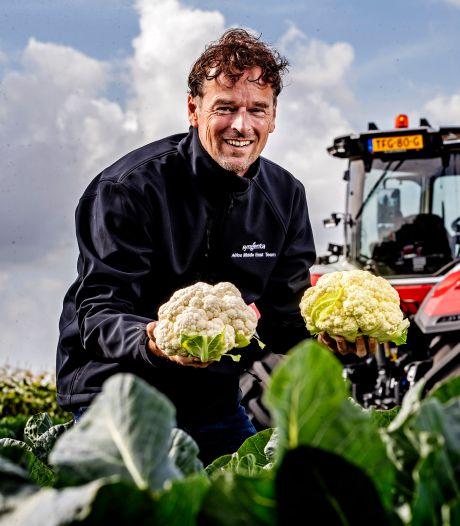 Met witblijvende mini-bloemkool voedselverspilling te lijf
