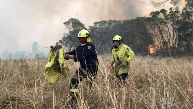 Vrijwillige brandweerman in Australië mogelijk brandstichter