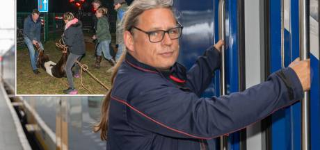 Dit is de conducteur die hét vermiste kalfje redde bij het spoor bij Hulshorst