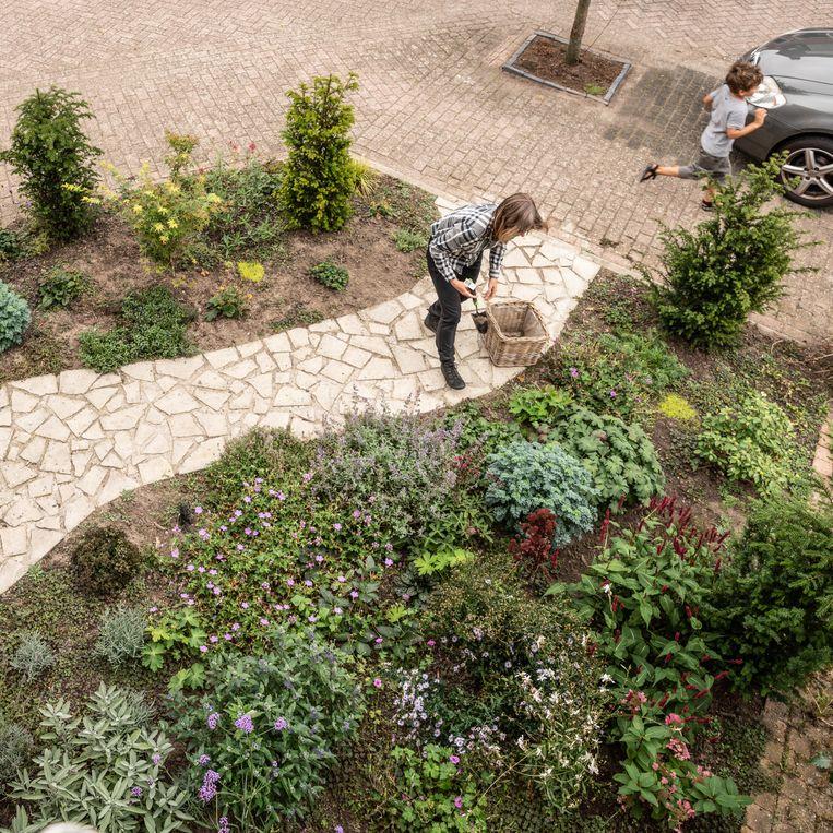 Stijntje Blankendaal met haar één jaar oude tuin.  Beeld Harry Cock