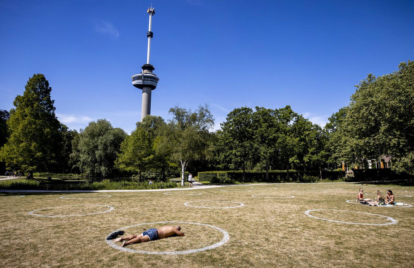 1,5 meter in Rotterdam.